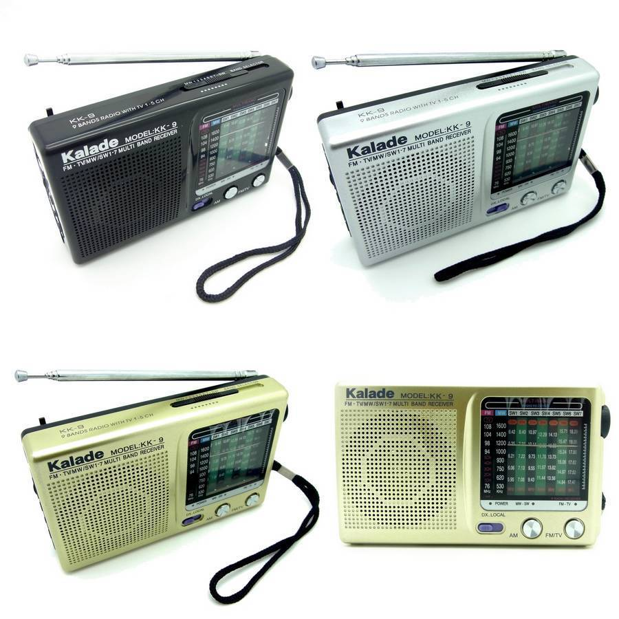 Mini Radio Portatile FM AM Colore Nero Champagne E Silver